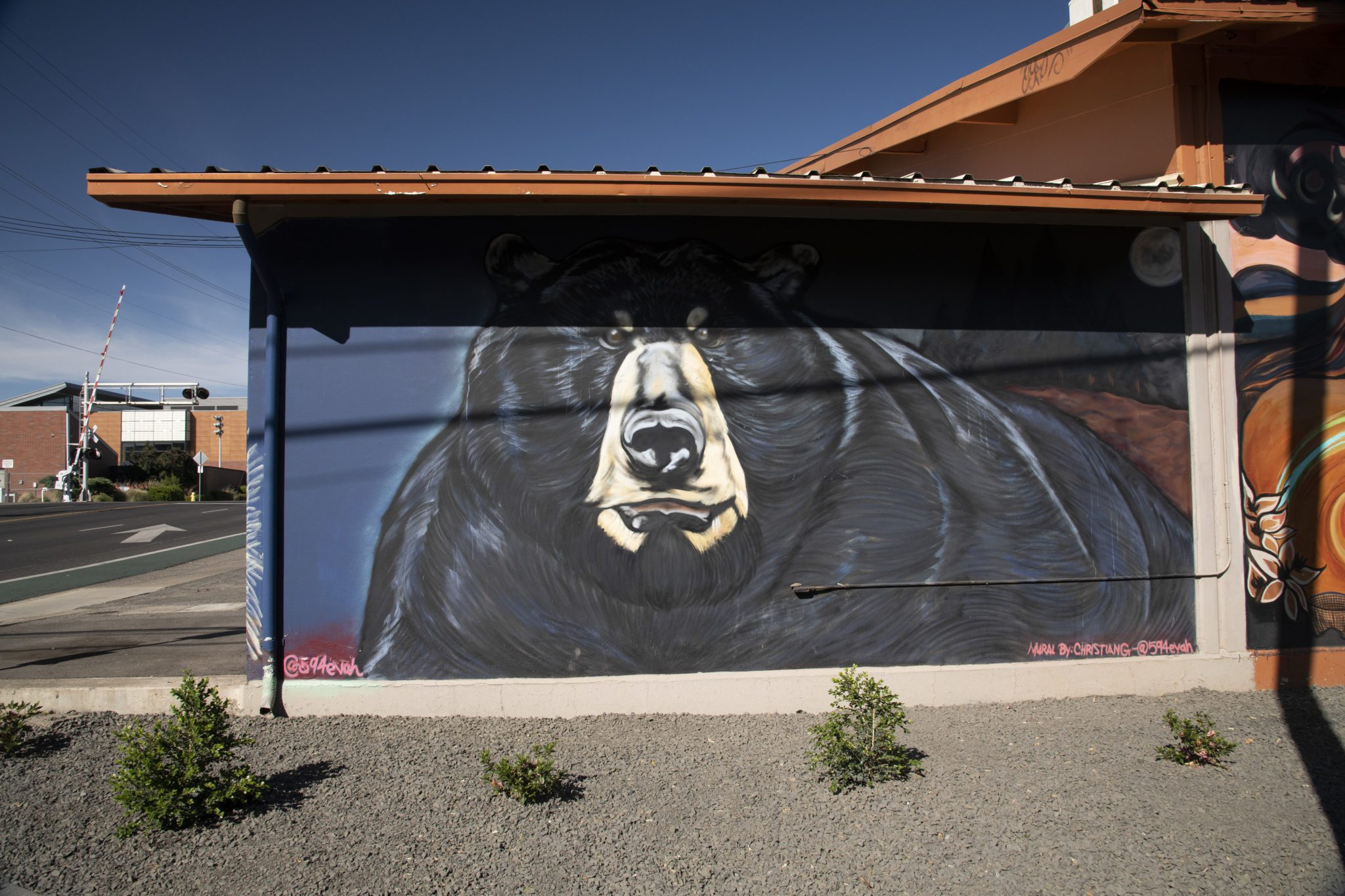 A mural by Ali Meders-Knight, a practitioner of traditional ecological knowledge and a member of the Mechoopda tribe, in Chico, Calif. Tuesday May 4, 2021.  Salgu Wissmath for The Intercept